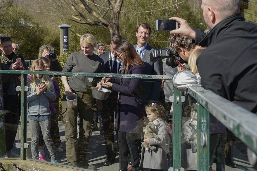 frække hjemmevideoer Aalborg Zoo kort