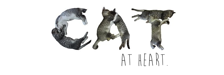 Cat at Heart by Tanya
