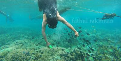 Gili Kondo, Gili Petagan, Gili Bidara, Snorkeling, Free Diving