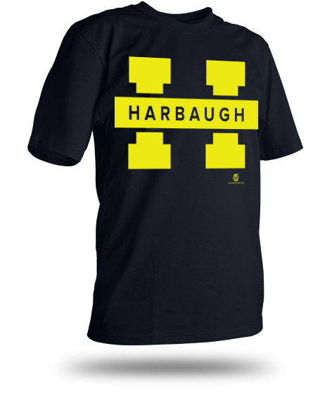 New t-shirt for Michigan fans who want a Harbaugh to be the next Wolverines head coach.