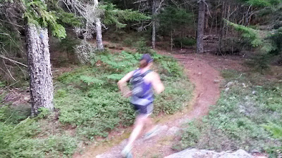 trail running on Cedar Swamp Mountain