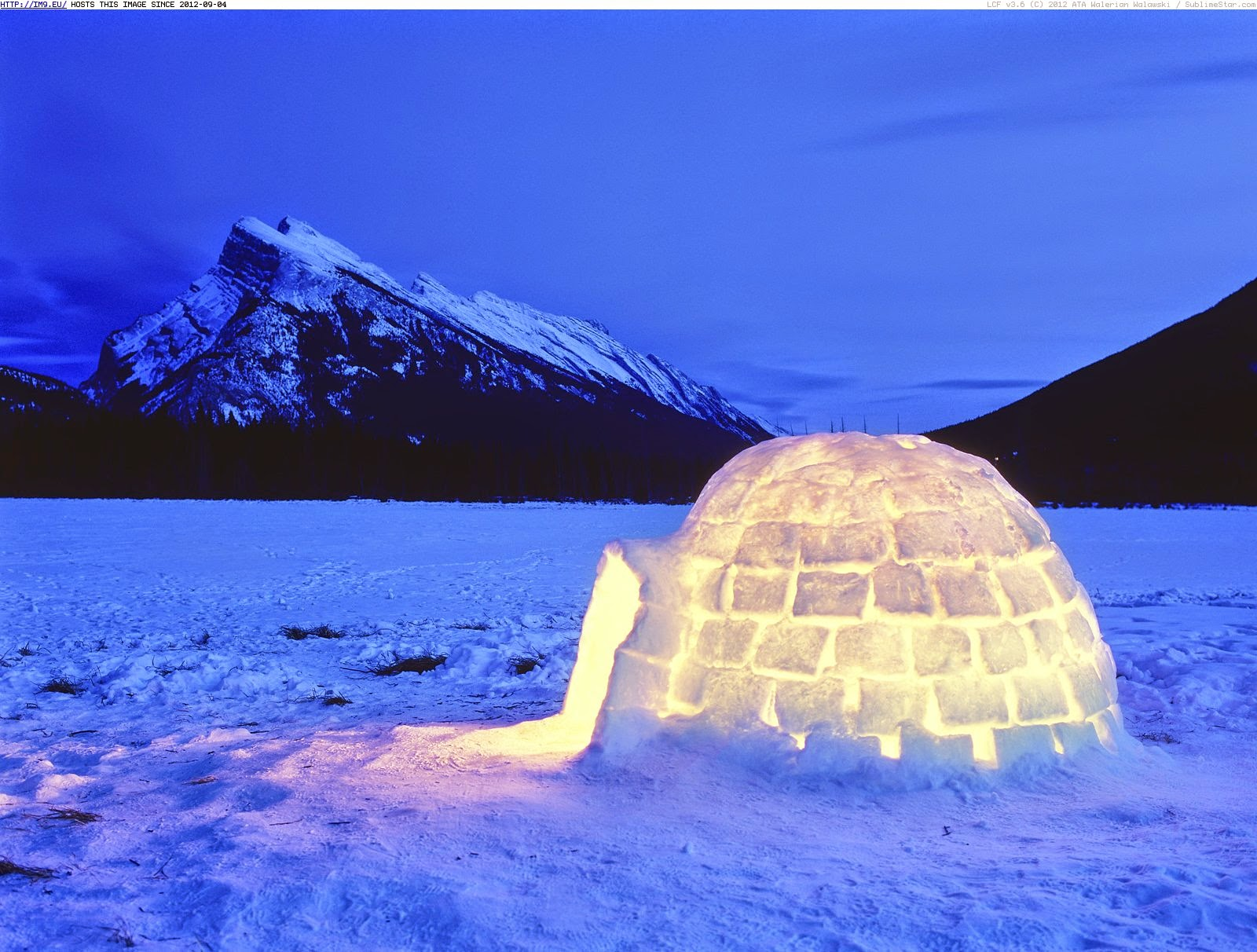 Igloos In The Arctic Common Misconceptions ...