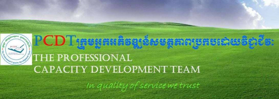 ACTIVITIES OF THE PROFESSIONAL CAPACITY DEVELOPMENT TEAM