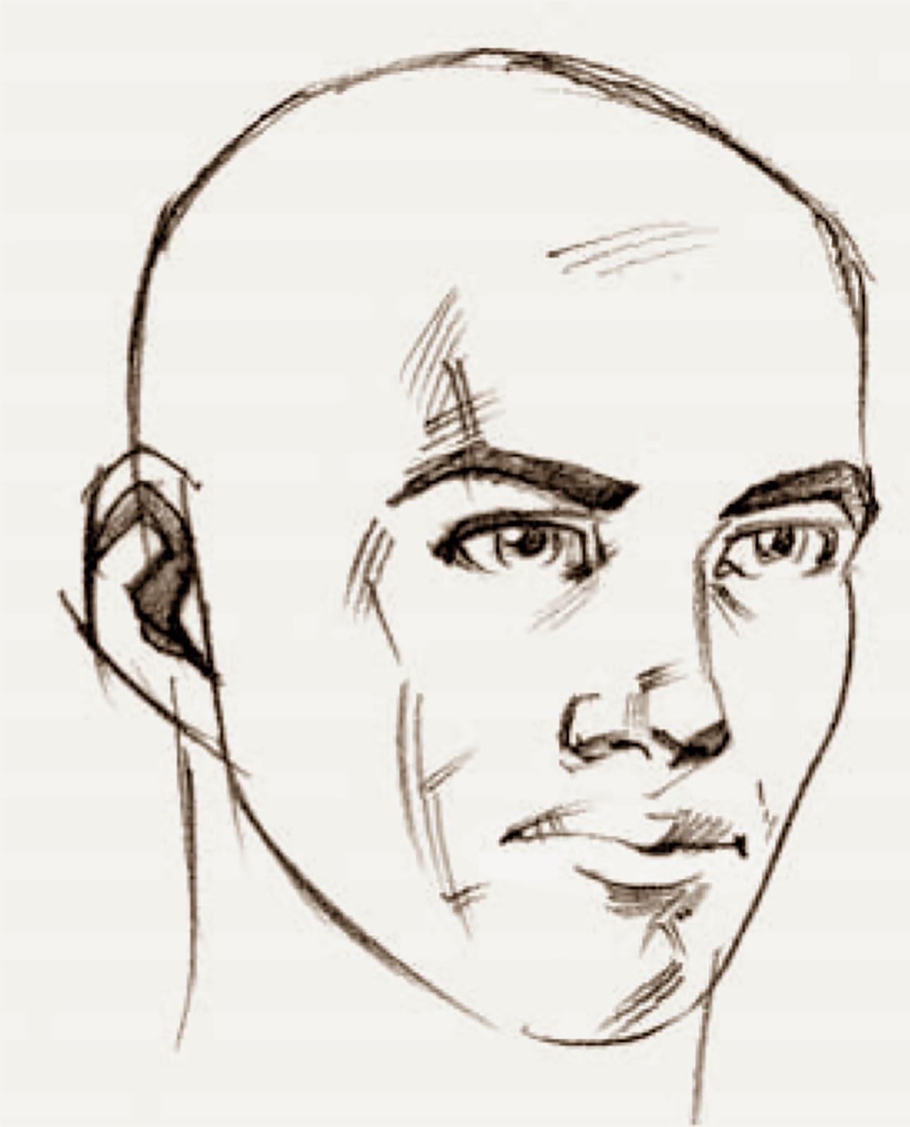 Human ear drawing - photo#23