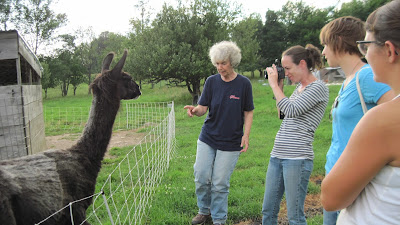 Carol Clement shows Catskills CRAFT members her animals at Heather Ridge Farm.