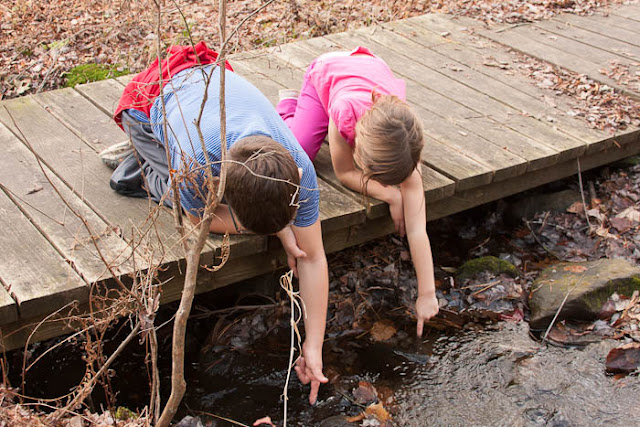 kids with hands in stream