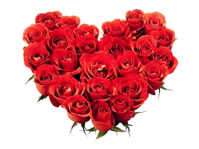Happy Valentine's Day red flowers bouquet gift