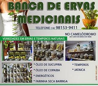 Banca de Ervas Medicinais