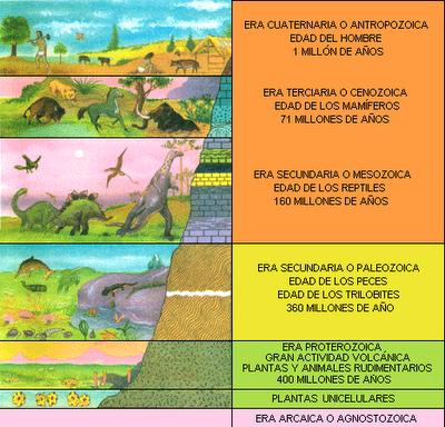 Nuestro trabajo eras geol gicas y f siles for Cuales son las caracteristicas de un mural