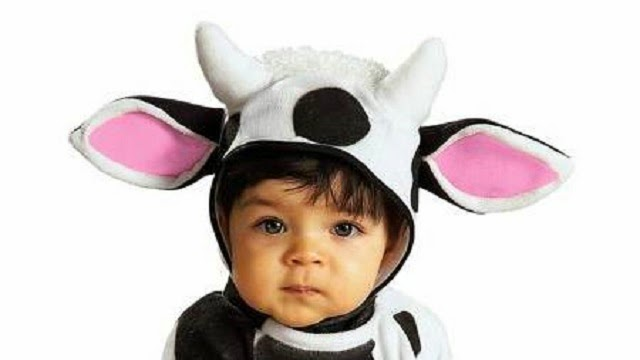 10 Of the most Adorably Cute Halloween Costumes for Babies