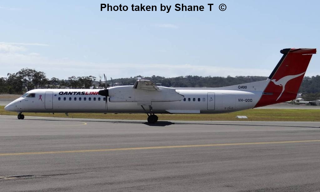 qantaslink flights moree to sydney - photo#24