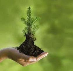 Selamatkan Lingkungan