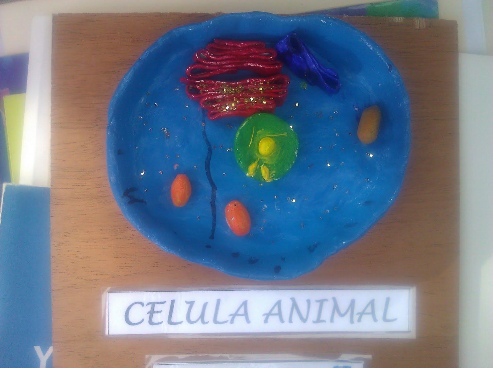 Como Hacer Una Celula Animal