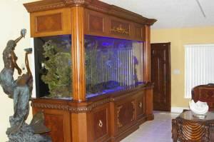 Giant aquariums 900 gallon custom reef aquarium 43000 for 150 gallon fish tank for sale craigslist