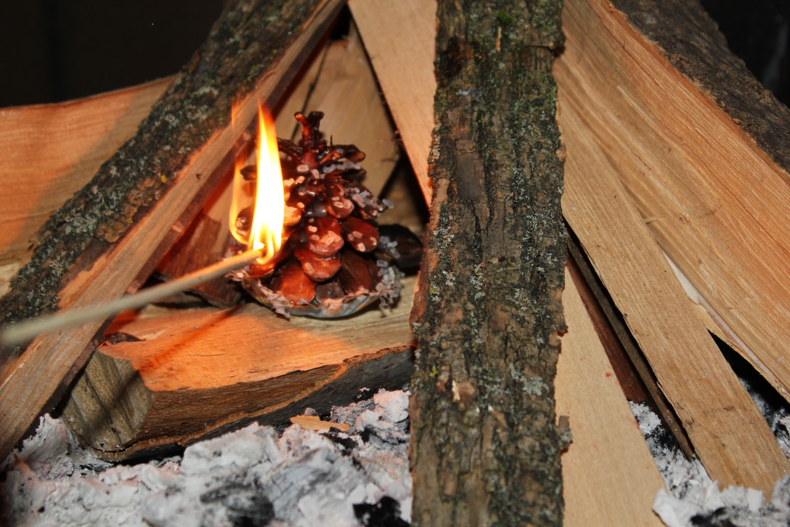 keep em going farm pine cone fire starters things to do with