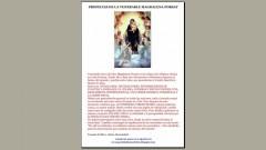 """ARGENTINA """"2012"""": PROFECÍAS COMPARADAS  Magdalena+porsat"""