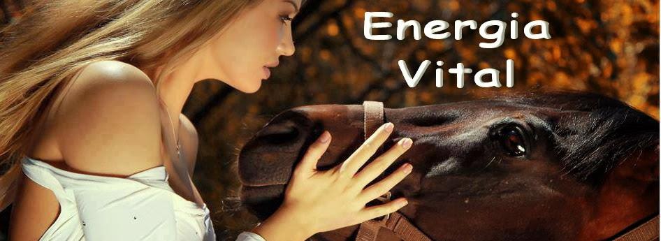 A Energia Vital