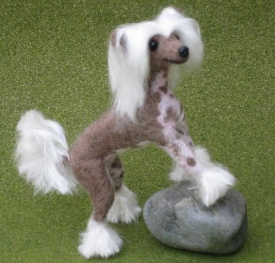 Chinese Crested Puppies on The Dog In World  Chinese Crested Dogs