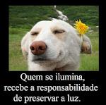 quando alguem ao seu lado vibrar tristeza... Sorria