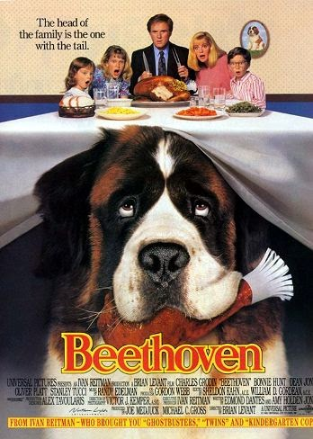 Beethoven 1992 Dual Audio [Hindi Eng] HDTV 480p 300mb