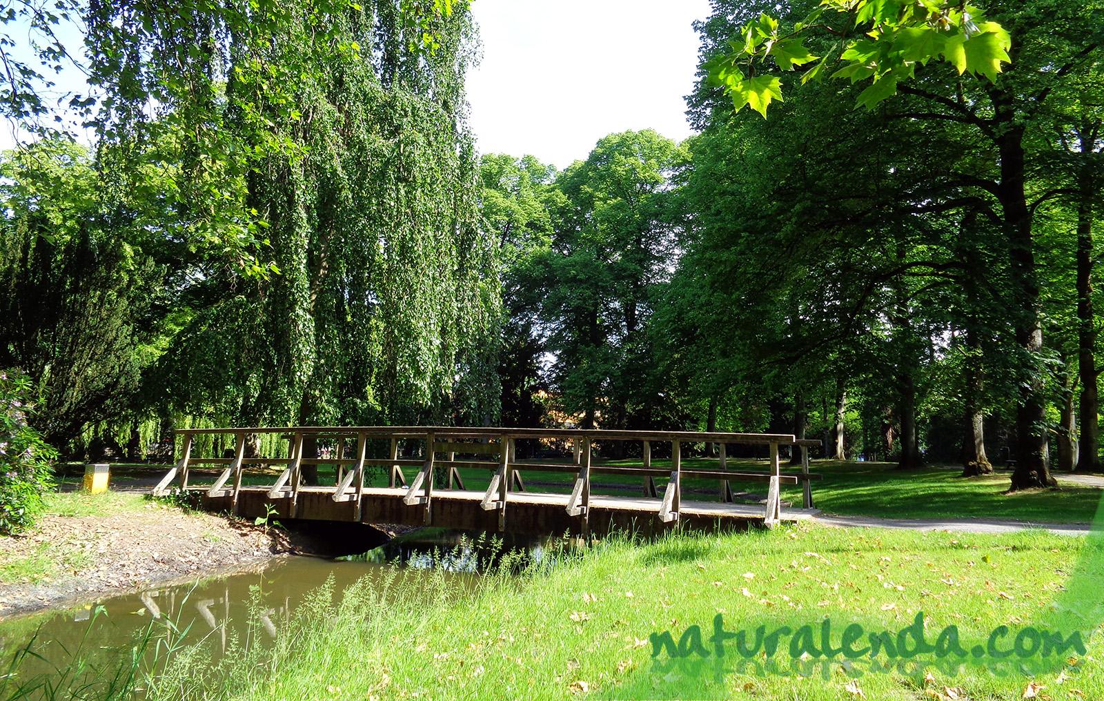 puente en Enschede