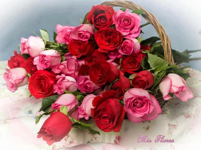 As rosas simplesmente exalam,o perfume que roubam de ti!