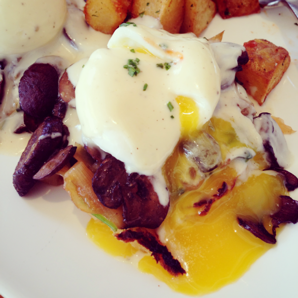 mission beach cafe mushroom benedict