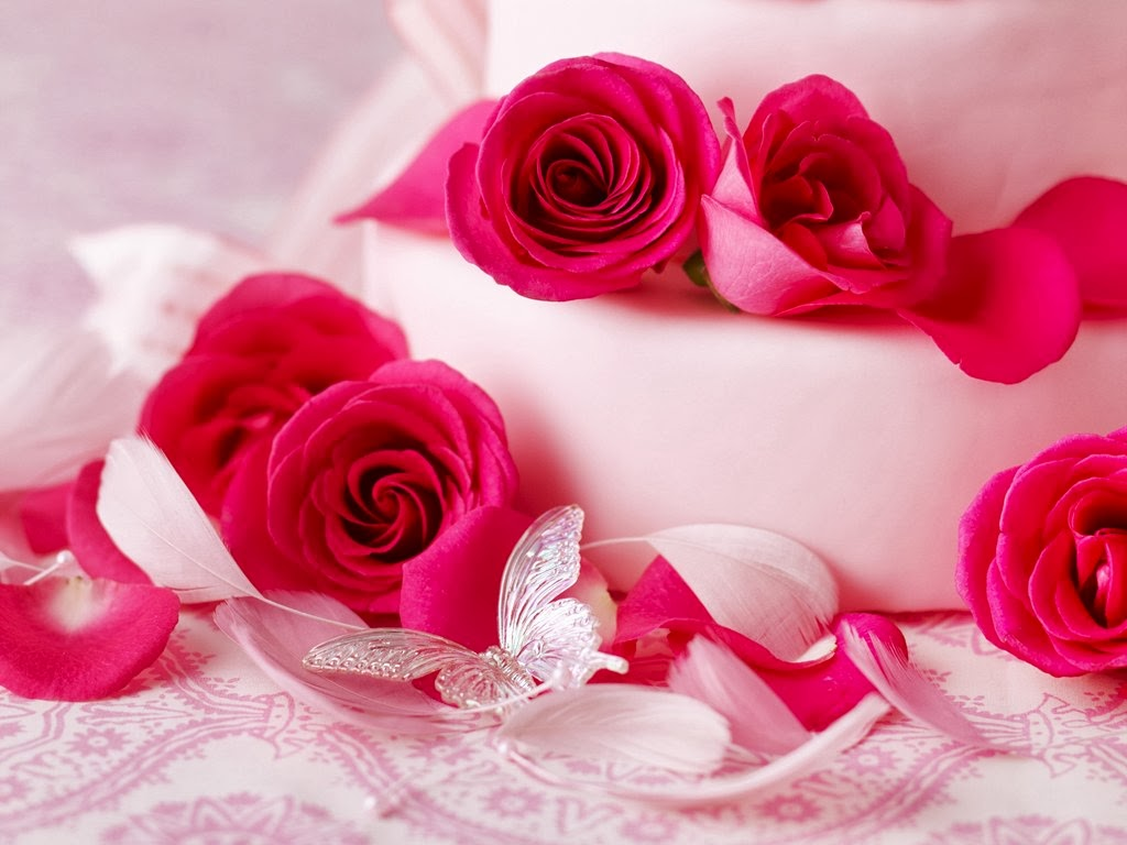 Beautiful Pink Roses Flower Hd Wallpapers