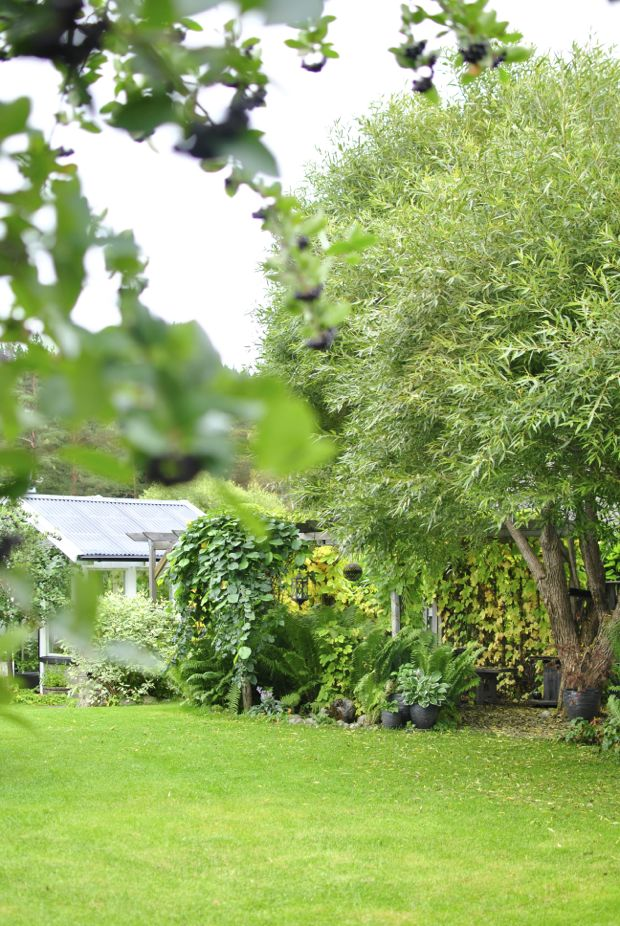 höst trädgård pergola bollpil växthus hängalm