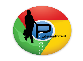 Chrome professional tool personal business
