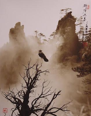 Fotografía de Don Hong Oai: ave sobre rama y montaña