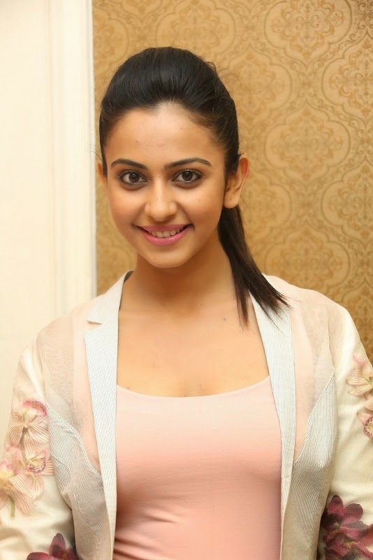 Rakul Preet at Rough Movie Press Meet Stills