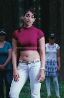 Tamanna, navel, show, tight, dress