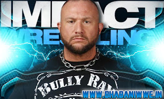 Result » TNA iMPACT - January 17 2013 (Bully Ray WEDS Brooke Hogan & More)