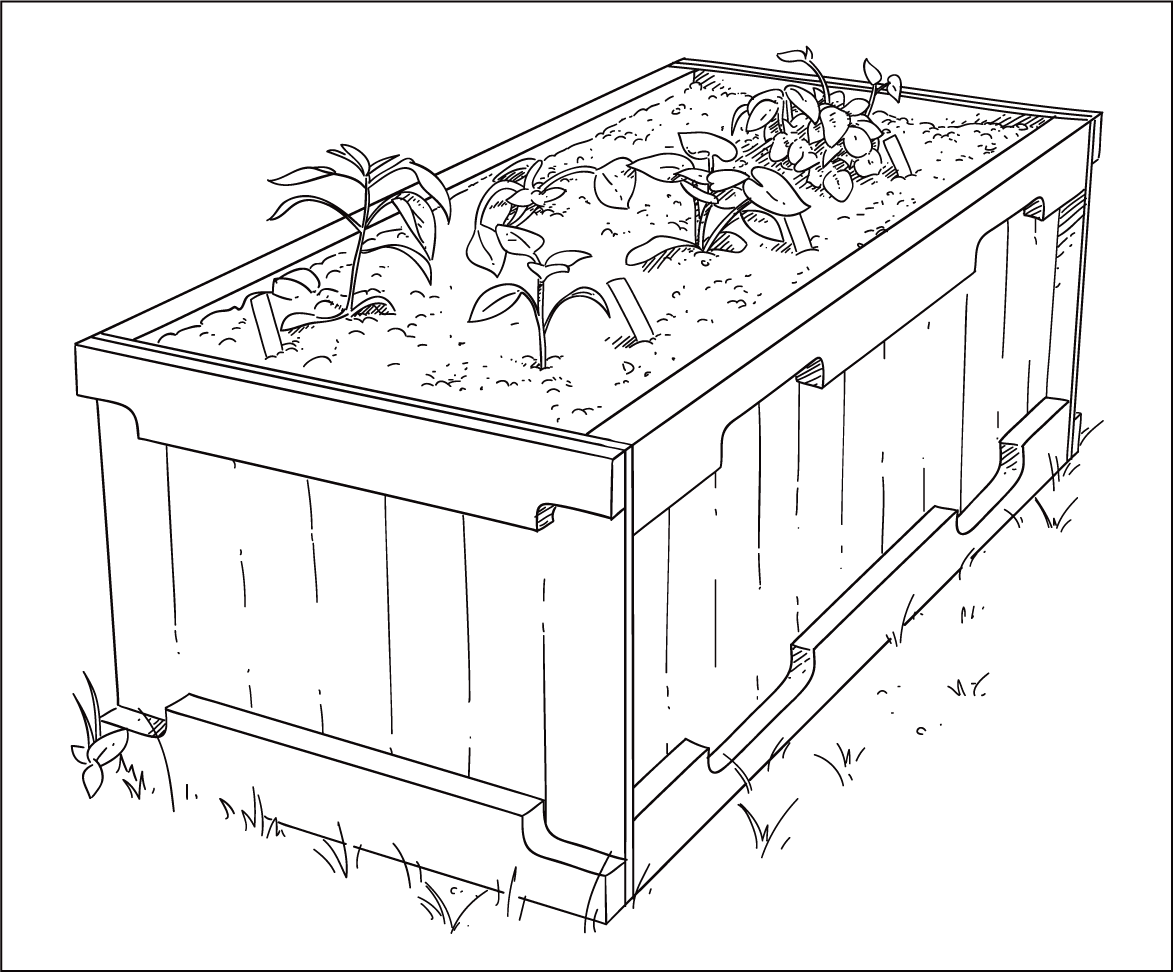 Garden Drawing Pictures 3D Drawing