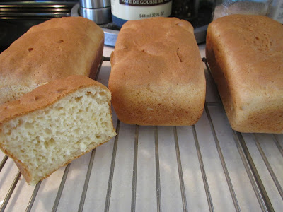 Gluten Free Delicious Bread and Rolls
