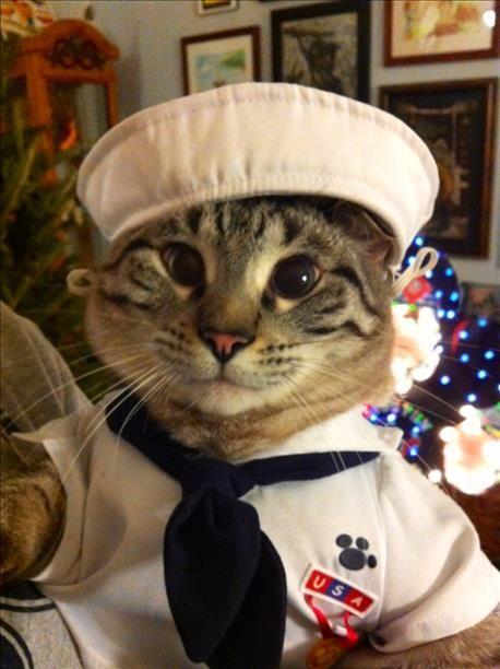 ваша лодка капитан