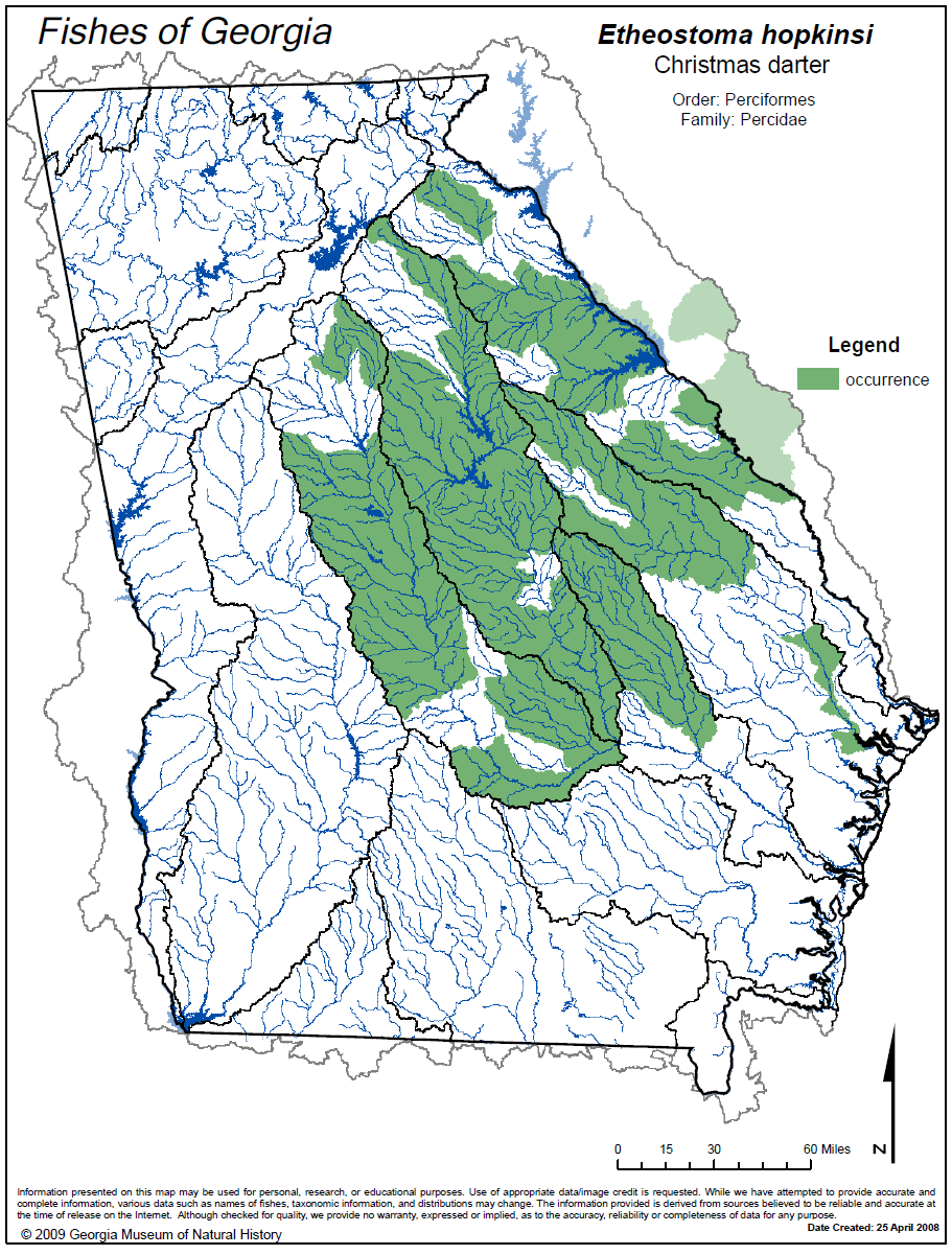 Freshwater fish of georgia - Distribution Of The Christmas Darter Fishes Of Georgia Website