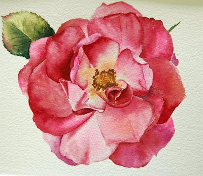 http://1.bp.blogspot.com/-EyFms-7u6Ng/TdlTaUPPieI/AAAAAAAACUM/sRvL77xm3n8/s1600/web+watercolor+rose_edited-2.jpg