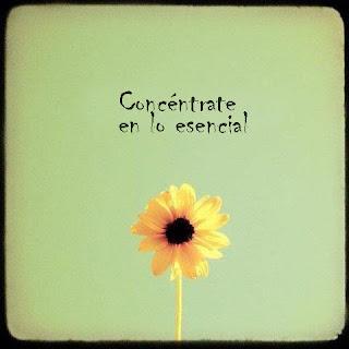 esencial flor positivo
