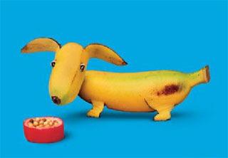 #4 Funny Fruits Wallpaper