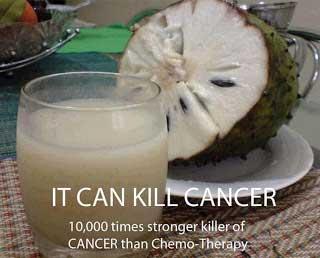 cegah kanker hati dan payudara dengan mengkonsumsi buah sirsak