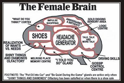 A-Women's-Brain