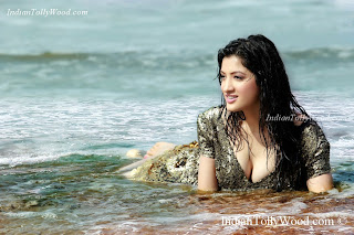 Richa Panai Hot Photo Shoot