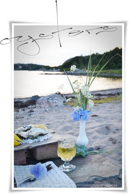 © Emelie Ekborg svenskablomsterbloggar,se