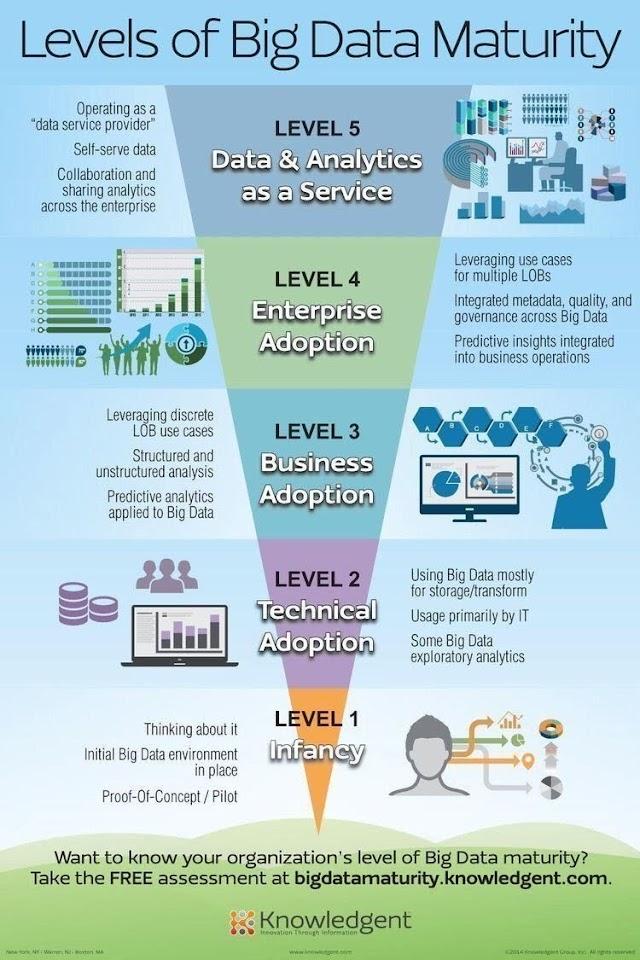 Levels of big data maturity