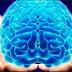 5 Cara Scientist Yang Dapat Membuat Otak Anda Menjadi Lebih Pintar