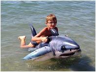 Théo et le requin