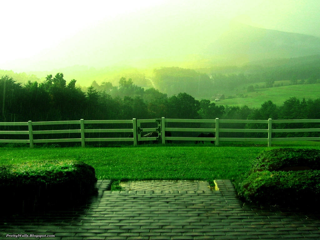 Pretty walls download amazing beautiful hd rainy wallpapers for Pretty wallpaper for walls