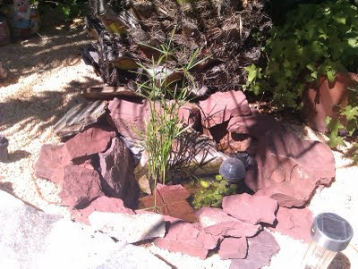 C mo hacer un peque o estanque en el jard n decorativo y for Estanque decorativo